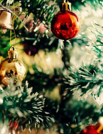 Kerstcruise